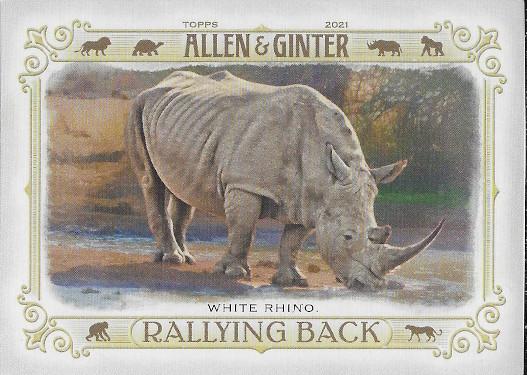 2021 Allen & Ginter Rallying Back #RB-7 White Rhino